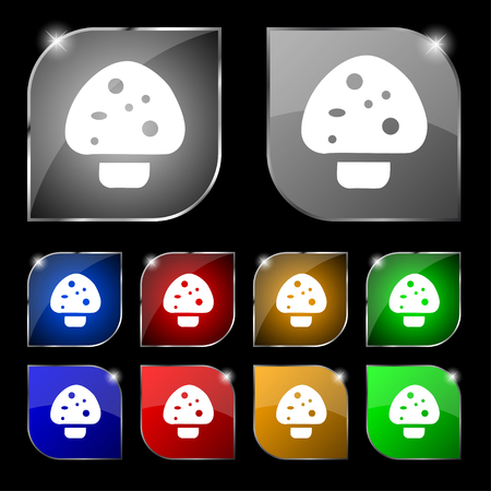 edible mushroom: mushroom icon sign. Set of ten colorful buttons with glare. Vector illustration