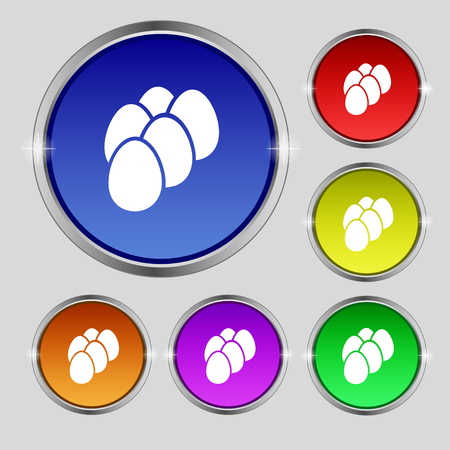 raw chicken: eggs icon sign. Round symbol on bright colourful buttons. Vector illustration