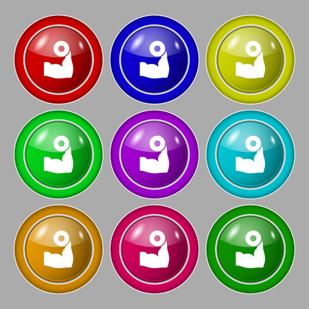 hand with dumbbell: Arm muscle with dumbbell in hand icon sign. symbol on nine round colourful buttons. Vector illustration