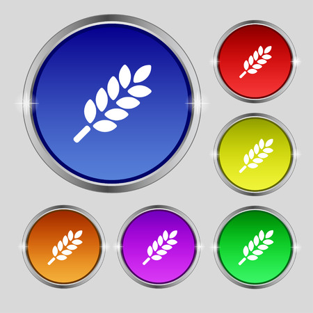 Wheat Ears Icon sign. Round symbol on bright colourful buttons. Vector illustration Illustration