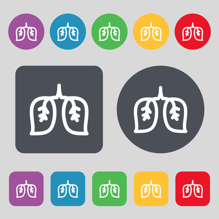 respiratory protection: lungs icon sign. A set of 12 colored buttons. Flat design. Vector illustration