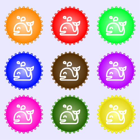 cetaceans: Whale icon sign. Big set of colorful, diverse, high-quality buttons. Vector illustration Illustration