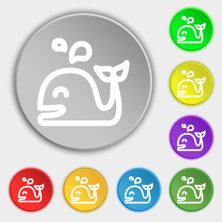 cetaceans: Whale icon sign. Symbol on eight flat buttons. Vector illustration