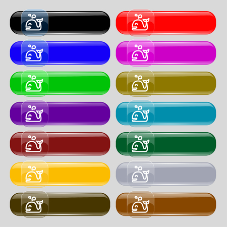 cetaceans: Whale icon sign. Set from fourteen multi-colored glass buttons with place for text. Vector illustration