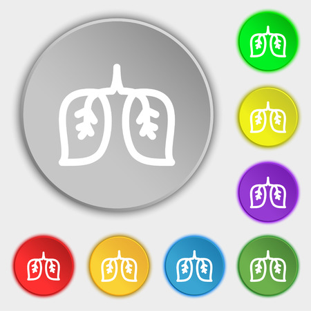 respiratory protection: lungs icon sign. Symbol on eight flat buttons. Vector illustration