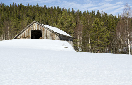 old barn in winter: Old barn  with a lot of snow and with forrest in background Stock Photo