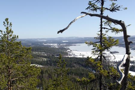 mountin: View over Anundsjosjon from Antarsberget a mountin near Bredbyn i the North of Sweden Stock Photo