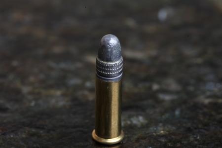22 Bullet