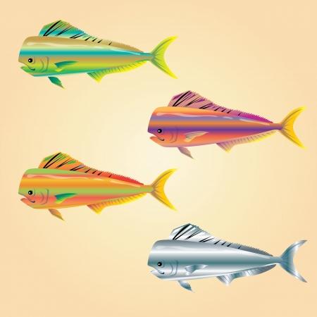 bunter fisch: bunte Fische
