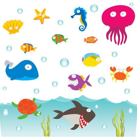 sea animals: Sea Animals Illustration