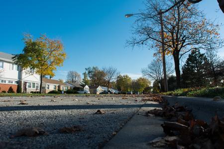 suburban: Suburban street Editorial