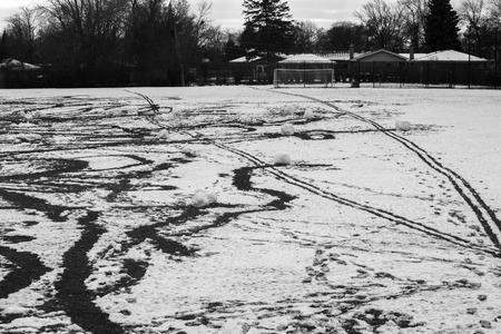 Prints op een sneeuw Stockfoto
