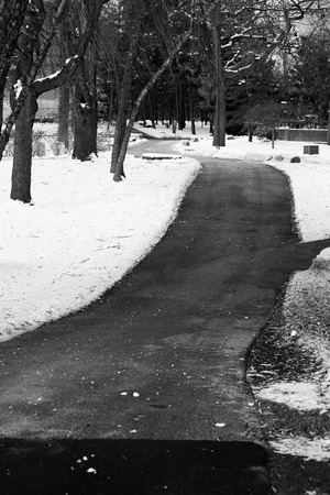 suburbs: Sidewalk in Chicago suburbs