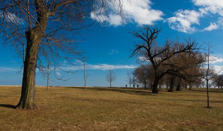 Park on a Michigan Lake