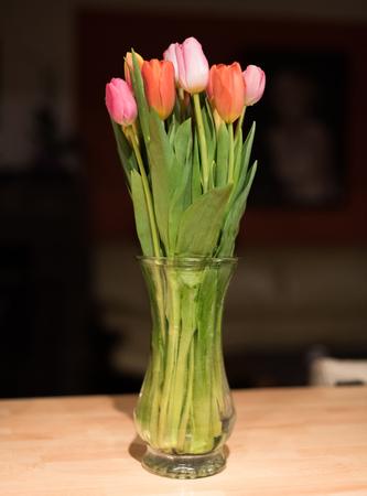 Tulips 版權商用圖片 - 73232799