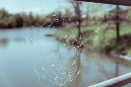 Spiderweb on a bridge in the park