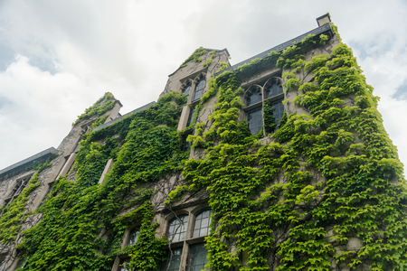 Big old stone building with an ivy on the wall