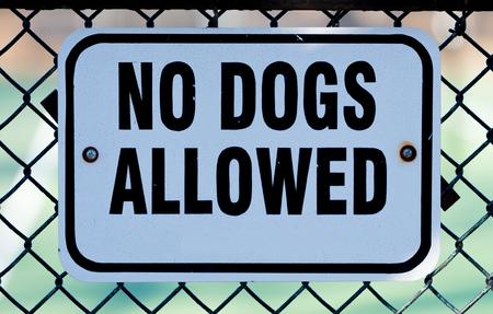 Aucun chiens autorisés signe blanc sur une clôture métallique Banque d'images - 95326780