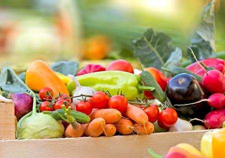 Verduras orgánicas frescas