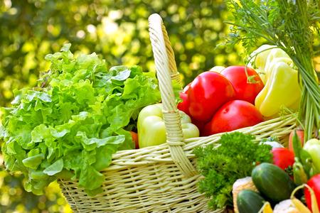 Légumes biologiques frais Banque d'images