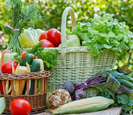 Fresh organic vegetables - healthy food