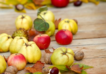 autumn harvest: Autumn harvest - Autumn fruits on table