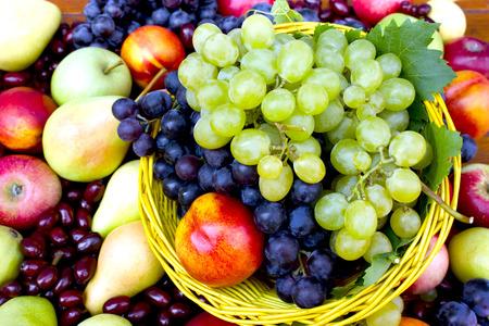 autumn harvest: Autumn fruits - Autumn harvest Stock Photo