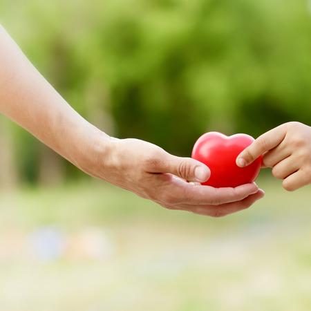 Tout l'amour donné à l'enfant - coeur d'amour dans la main