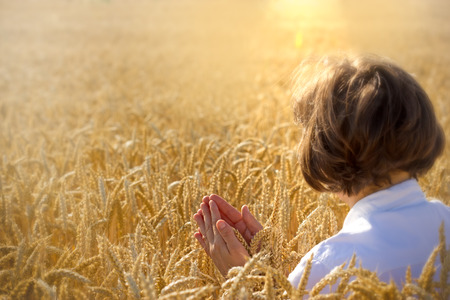 yields: Woman holds wheat and pray for harvest