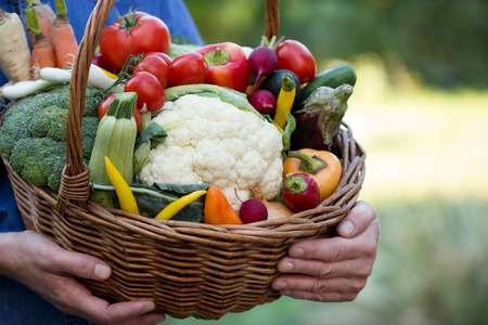 vegan food: Vegetables in hands