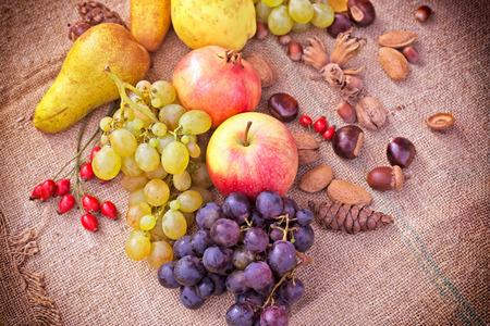 Frutta di autunno - Raccolta di autunno Archivio Fotografico