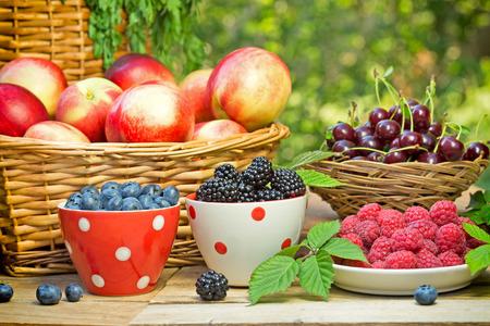 Frische Bio-Beerenfrüchte Lizenzfreie Bilder