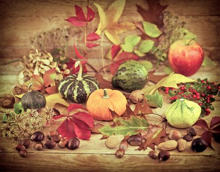 autumn harvest: Autumn harvest Stock Photo