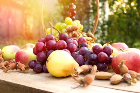 Organic autumn fruits