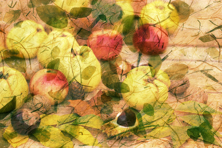 autumn harvest: Autumn harvest - autumn decoration, picture is made of two images fruits and leaves Stock Photo