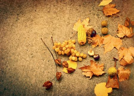 focus on background: Autumn concept