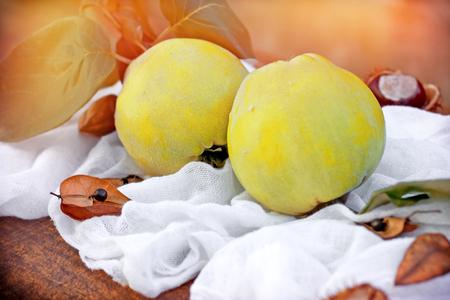 quinces: Quinces - Autumn fruit