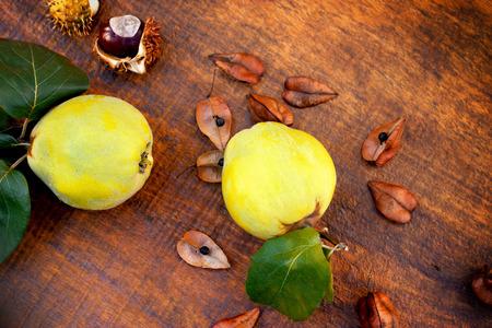membrillo: Frutos de oto�o - membrillo de manzana membrillo