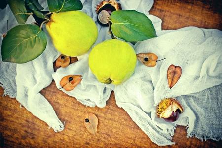 membrillo: Org�nica de membrillo de manzana membrillo - fruto de oto�o