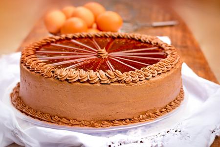 Chocolate cake - Dobos cake Stok Fotoğraf