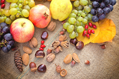 Organic seasonal fruits - autumn fruits