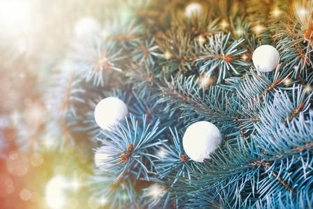 boule de neige: Snowball sur l'arbre de No�l