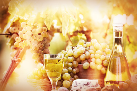 soft   focus: Soft focus on grapes and wine Stock Photo