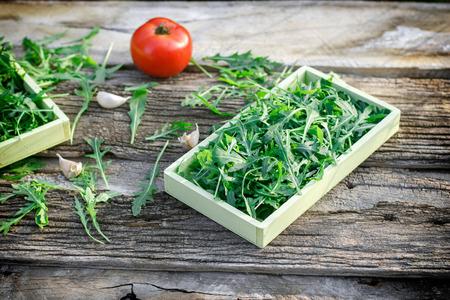 garlic: Fresh organic green salad