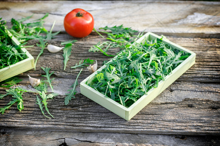 ajo: Fresh organic green salad