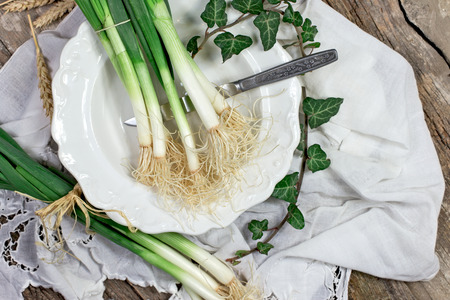 spring onions: Organic spring onions on plate - healthy eating