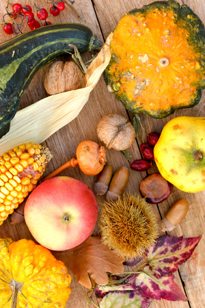 Fall organic fruits and vegetables - harvest time