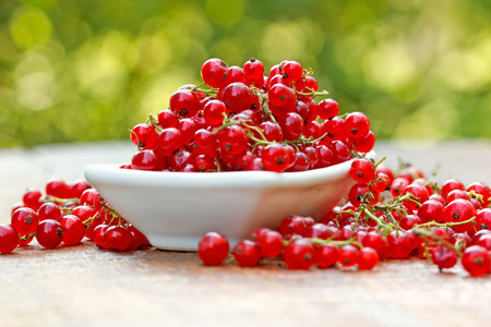 red currant: Fresh  organic red currant