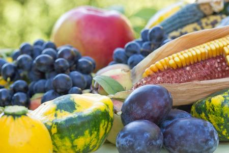 seasonal: Autumn harvest - organic seasonal healthy food Stock Photo