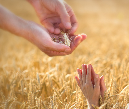 禱告是給恩人 - 捐助者 版權商用圖片